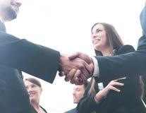 Большая группа в составе многонациональные бизнесмены делая рукопожатие Стоковое Изображение RF