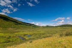 Большая зеленая долина около озера Cheybekkol в горах Altai, республики Altai, России стоковые изображения
