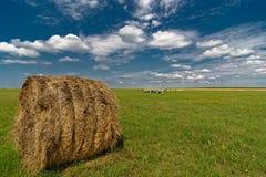 Большая круглая связка соломы в поле Стоковая Фотография