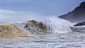 большая пакостная волна стоковая фотография rf