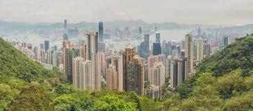 Большая панорама горизонта Гонконга kowloon заречья залива финансовохозяйственное первое над wiew пикового плана временени взгляд Стоковая Фотография RF