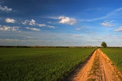 большая Польша Стоковая Фотография