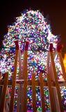 большая рождественская елка Стоковое Изображение