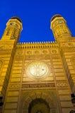 большая синагога Стоковые Фотографии RF
