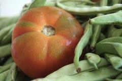 Большая сработанность красных томатов и зеленых фасолей стоковое фото