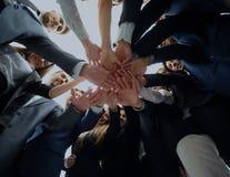 Большая успешная команда дела показывая единство с их руками t Стоковое Изображение RF