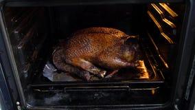 Большая утка испеченная в печи сток-видео