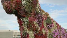 Большая флористическая скульптура собаки сделанная из красочных цветков, экскурсионного тура к Бильбао видеоматериал
