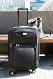 Большая чернота катила чемодан стоя на поле в авиапорте, и рюкзак ` s женщины на стенде Стоковое Фото