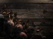 большая яркая отливка подрезывая удлиненную сеть паука тени тайны лунного света венчика гибкостей пирофакелов таинственную Стоковые Изображения