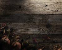 большая яркая отливка подрезывая удлиненную сеть паука тени тайны лунного света венчика гибкостей пирофакелов таинственную Стоковое Изображение
