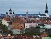 Больше деталей верхнего городка Toompea в Таллине стоковые изображения rf