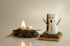 больше снежка Стоковое Фото