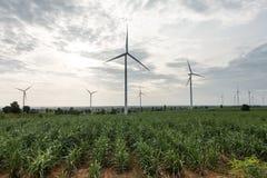 большие голубые облака плавают вдоль побережья ветер белизны погоды неба Ирландии восточной фермы славный электричество производя стоковая фотография