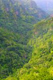большие горы горы ландшафта Взгляд гор на парке лесохозяйства Queimadas трассы - Caldeirao Verde Стоковые Фотографии RF
