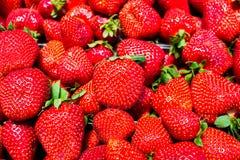 Большие зрелые клубники близкие вверх по текстуре Любимая концепция ягод Сезонная еда стоковое фото rf