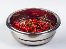 большие зрелые красные вишни Стоковые Изображения RF