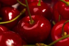 большие зрелые красные сладостные вишни Стоковое фото RF