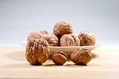 Большие и малые, все и прерванные грецкие орехи Стоковая Фотография