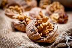 Большие и малые, все и прерванные грецкие орехи Стоковые Фото