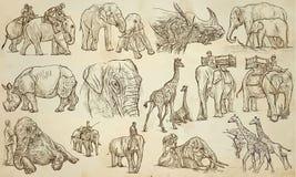 БОЛЬШИЕ и ТЯЖЕЛЫЕ ЖИВОТНЫЕ - нарисованный рукой пакет вектора, линия искусство иллюстрация штока
