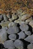 Большие камни под кустом Стоковое Фото