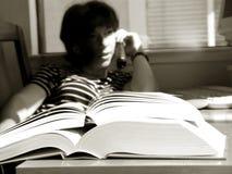 большие книги Стоковые Изображения RF