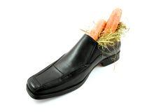 большие моркови обувают sinterklaas Стоковые Изображения
