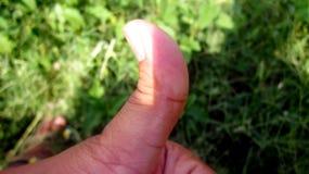 Большие пальцы руки вверх с зеленой травой в предпосылке Стоковая Фотография