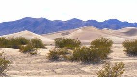 Большие песчанные дюны в пустыне Невады акции видеоматериалы