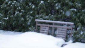 Большие снежности над местами установленными на домашний двор движение медленное сток-видео