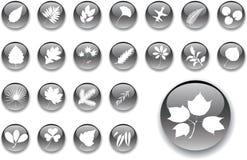 большие установленные листья кнопок 1 Стоковые Изображения