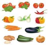 большие цветастые овощи группы иллюстрация вектора