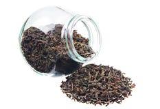 большие черные сушат чай листьев Стоковая Фотография RF