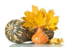 Большие striped тыква и ваза при листья осени изолированные на wh Стоковая Фотография