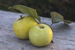 2 больших желтых яблока лежат на старом деревянном столе outdoors Стоковое фото RF