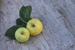 2 больших желтых яблока лежат на старом деревянном столе outdoors Стоковые Фото
