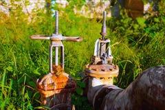 2 больших клапана воды в солнечном свете на предпосылке травы Стоковые Изображения