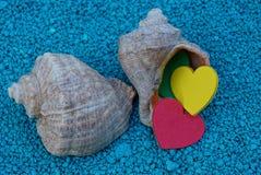2 больших раковины с покрашенными сердцами на голубых камнях Стоковое Изображение
