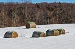 5 больших свернутых связок сена в поле Snowy стоковое изображение