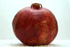 Большое зрелое красное гранатовое дерево Плодоовощи красного зрелого гранатового дерева на белой предпосылке Стоковое Изображение RF