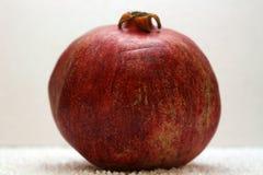 Большое зрелое красное гранатовое дерево Плодоовощи красного зрелого гранатового дерева на белой предпосылке Стоковое фото RF