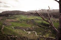 Большое избежание к небу Вид с воздуха полей ` s Ronda стоковые фото