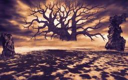 Большое мертвое дерево в расчистке с руинами в оранжевом цвете Стоковые Изображения RF