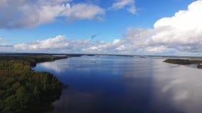 Большое озеро в лесе видеоматериал