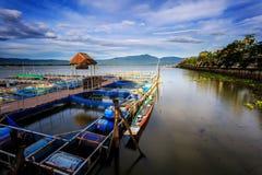 Большое озеро в Phayao Таиланде назвало Kwan Phayao, удя ферму, взгляд сверху стоковая фотография