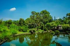Большое озеро с зеленым деревом с различным цветом на японском стиле сада с голубым небом - фото стоковое фото rf