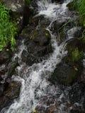 Большое отключение к Камчатке Загадочные места стоковое фото rf