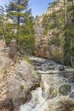 Большое река Томпсона в каньоне утеса стоковые фото