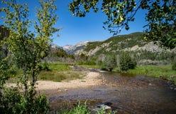 Большое река Томпсона в национальном парке скалистой горы Стоковые Фотографии RF